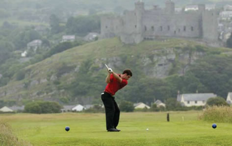 Royal St Davids Golf Club